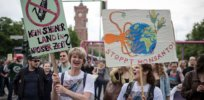 European Union court rules activists can challenge EU approval of GMOs