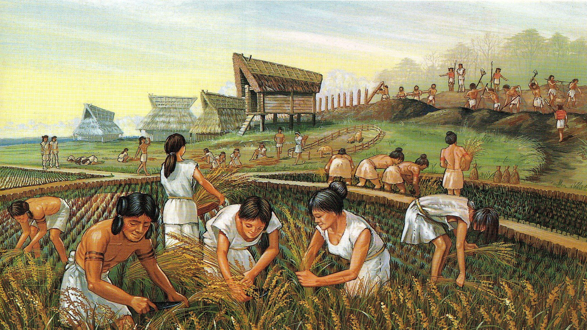 Which came first, intensive agriculture or complex society? | Genetic  Literacy Project