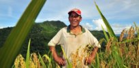 Bolivia Farmer Local Food Production Investment x