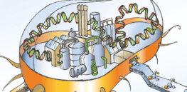 biofactory