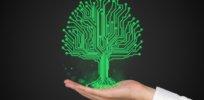 plant biosensor