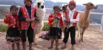 peru children ngsversion