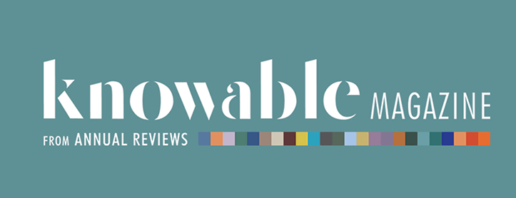knowable logo