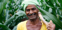 In push for access to GMO seeds, Indian farmers turn to social media