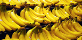 Bananas by Steve Hopson