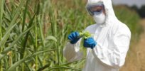 Feed the World sans GMOs x