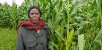 blog women in rural south africa take on climate change