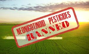 neonicotinoids ban