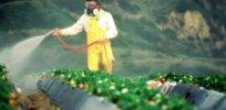 sprayingcrops