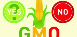 GMO labeling thumb