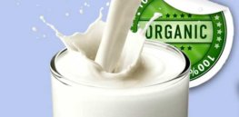 Organic Cow Milk Gurgaon