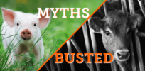 blog six myths about farming busted main