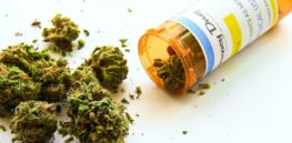 republican senator nothing to fear medical marijuana