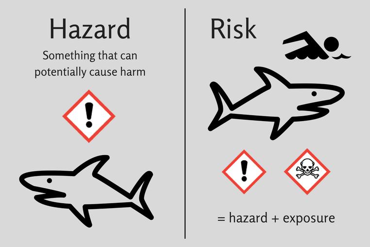 risk hazard sharks minimized