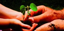 sustainfarming