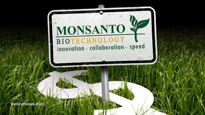 Monsanto Money Crops