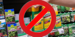 Roundup Glyphosate Pesticides