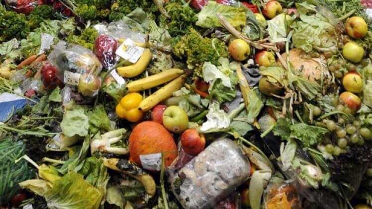 food waste 8 27 18 2