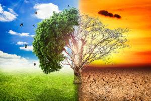 global-warming2222567
