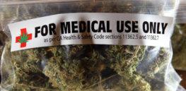 Medicalpot x