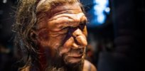 Were Neanderthals wiped out by icy climate change?