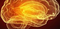 brain crop