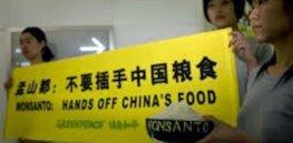 chinamon