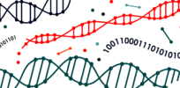 dna Genetic Algorithm e