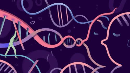 genetically modified twins edits x