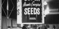 mutagenesis seeds pix copy