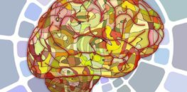 brain signals speech neurosciencenews public