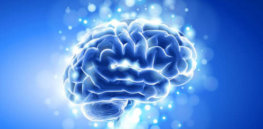 boomerly com why older brains are amazing x