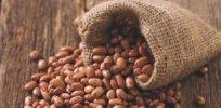 pinto beans header b