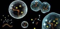 eic feature origins of life f m