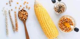 corn comparison x