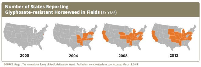 horseweed-states-graph1