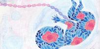 genome sequencing custom cebcb a d d fac bd fe f e afc s c
