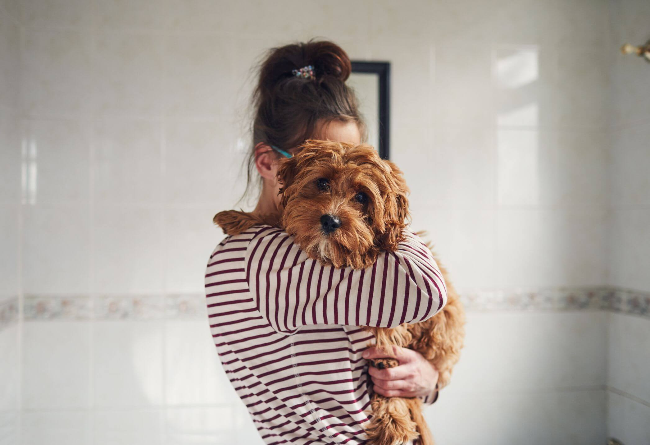 woman bathing her puppy royalty free image