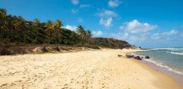 empty beach x