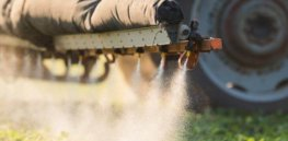 Viewpoint: Skeptical of pesticides? That's because you don't know what life is like without them