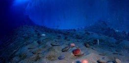 paysage sous marin antarctique