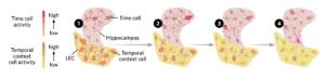 keepingtrack cells