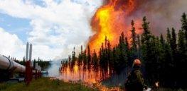 photo aggie creek fire philip spor x landscape