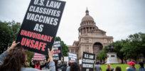 texas protest al d d f d ed e c b a bdb