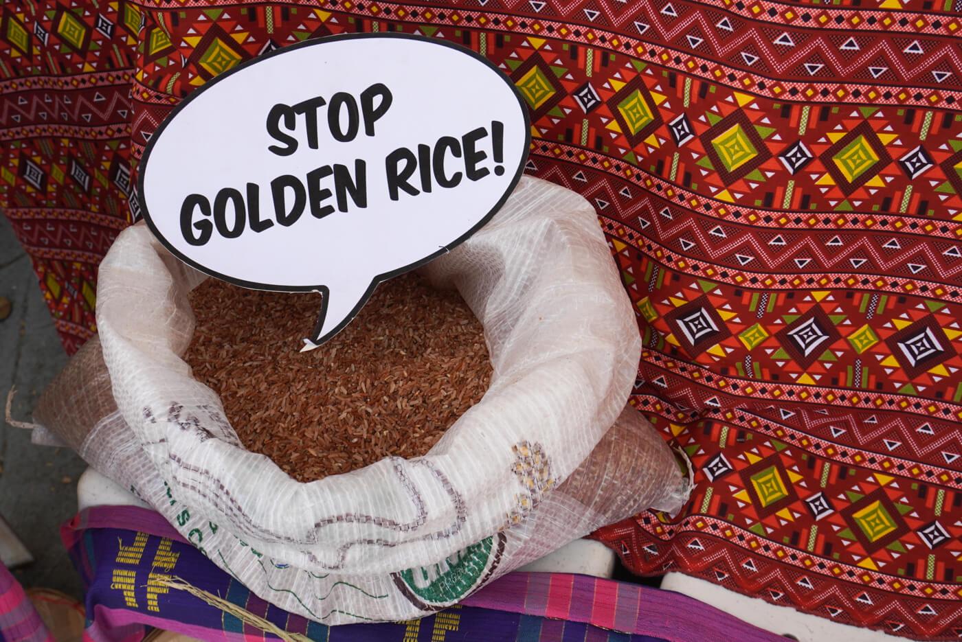 stop golden rice