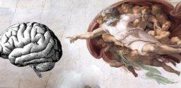 adam creation brain tsa x