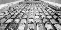 flu epidemic cots