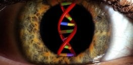 Gene therapy may be able to restore vision