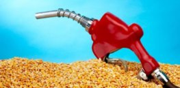 Viewpoint: The failure of corn-powered cars – How America's ethanol subsidies boosted food prices and carbon emissions