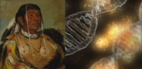 Many Americans have 'Native American DNA'. What does that mean?